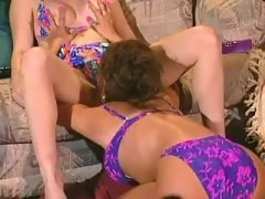 Lovely girls caress yummy pussies lesbian xxx